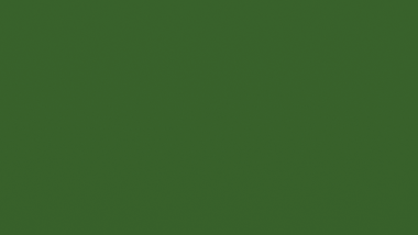 30-6142-C AG GREEN F9A